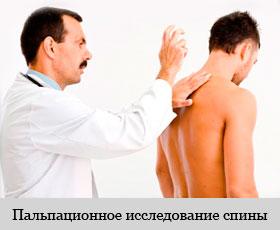 Пальпационное исследование спины
