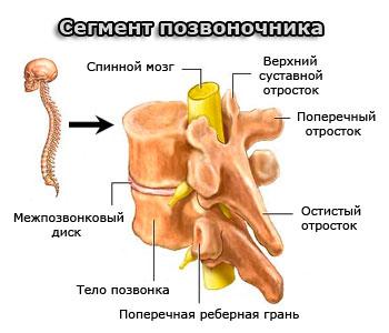Неврология симптомы заболевания спины лечение