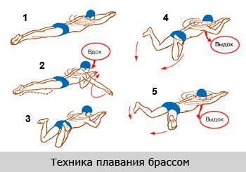 5 упражнение для осанки