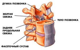 Симптомы грыжи шейного отдела